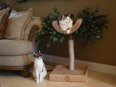 Sycamore Cat Pet Tree House por PetTreeHouses en Etsy