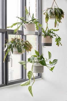 Hanging plants helps create coziness with Hübsch Planters png C. Hanging plants he Diy Hanging Planter, Hanging Herbs, Window Hanging, Hanging Pots, Planter Ideas, Hanging Baskets, Plant Wall, Plant Decor, Plant Pots