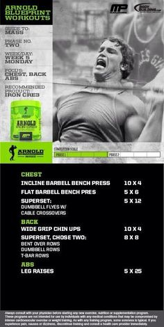 Arnold blueprint phase 2 gym pinterest workout and gym arnold blueprint chest back abs malvernweather Choice Image