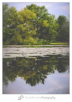 Orlando Photographer| Landscape Photography| Sliwa Studios Photography| Water Reflection| Lake Holcombe, WI| 2012