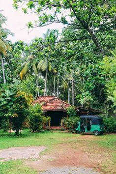 Exploring Beruwala And Bentota, Sri Lanka (24)
