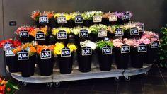 Dove trovate così tanti fiori diversi?! Venite a inventare il vostro bouquet:)