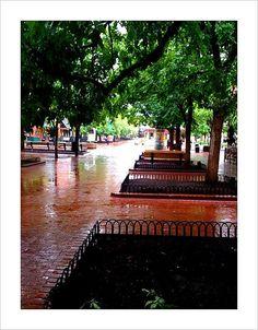 Rainy Pearl Street - Boulder