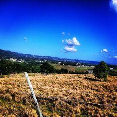 Bella la tarde en mi isla! #Padgram