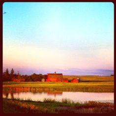 A typical Saskatchewan summer evening