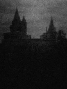 A winter shadow. Gothic Aesthetic, Slytherin Aesthetic, Darkside, Dark Castle, Arte Obscura, Dark Paradise, Arte Horror, Black And White Aesthetic, Dark Photography