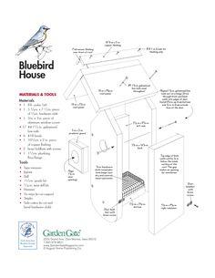 Bluebird House, Bird House Plans, Birdhouses, Squirrels, Wood Work, Blue Bird, Outdoors, Birds, Hat