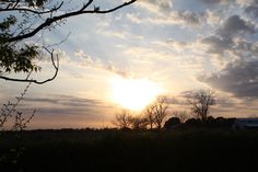 I took this down the road from my moms house , the sunset in the field , Gods beauty