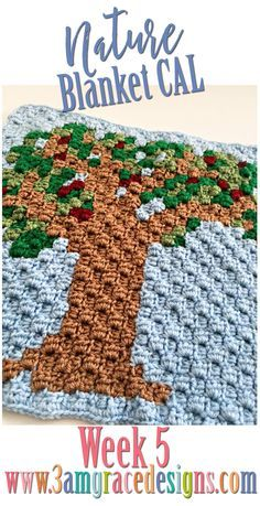 FREE C2C crochet pat