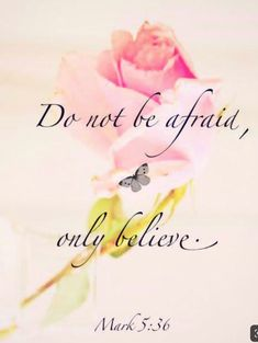 Mark 5:36 Faith Verses, John 16 33, Only Believe, Scriptures, Bible Verses