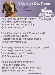 A Mother's Day Poem from the Dog