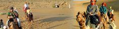 Rajasthan Desert Tours, English Speaking Driver, Camel Safari Desert Tours