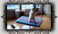 DIY  Strick Schaukel für Katzen   knit Swing for Cats