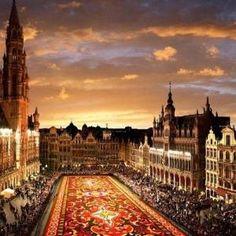 Flower Carpet, Bruxelas, Bélgica por Whitney