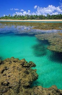 Praia do Espelho, Bahia, Brazil Wouldn't rather wish you'd be there right now? Most Beautiful Beaches, Beautiful Places To Visit, Wonderful Places, Places To Travel, Places To See, Places Around The World, Around The Worlds, Foto Art, South America Travel
