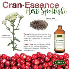The added herbs in CranEssence are traditionally used for their diuretic and antiseptic properties which help the body flush the bladder and urethra.  Enter to win a #free bottle of Cran-Essence for #FreebieFriday by liking our page and commenting below.  #giveaway #BeFloraHealthy #cranberries #HappyBladders