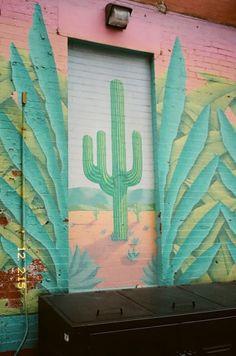 cactus mexicano