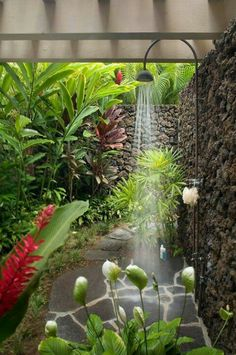 Indoor Container Gardening How to grow a tropical garden.beautiful outdoor shower - If you live in a house and you have at least small space called garden / backyard, you are lucky person. When you want to escape from the crowd, the Outdoor Baths, Outdoor Bathrooms, Outdoor Rooms, Outdoor Gardens, Outdoor Living, Outdoor Bedroom, Outdoor Kitchens, Outdoor Plants, Indoor Outdoor