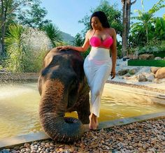Pink Bikini, Travel And Tourism, Rocks, Elephant, Romance, Bikinis, Places, Beauty, Bikini