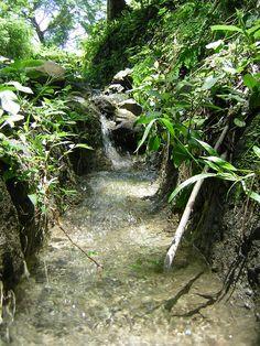 Nacimiento de Agua en Sn. Antonio Los Ranchos, Chalatenango, El Salvador.