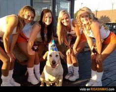 Posiblemente el perro más feliz del mundo.
