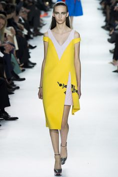 Christian Dior, Fall 2014.