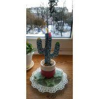 Po prostu K.Lis: Kaktus 🌵
