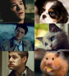 Supernatural funny men