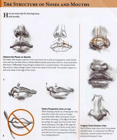 structure on noses and mouths - Drawing Tutorial.