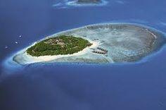 Fihalhihi island resort #voyagewave #maldivesholidays -->> www.voyagewave.com