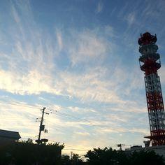 from Apio Aomori