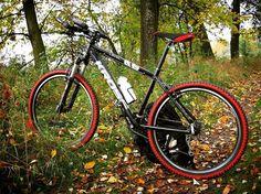 Mój. ❤ Przed paroma przeróbkami, ale uwielbiam go w tej scenerii. @krossbikes #rower #neirawypełzaznory