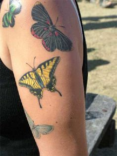 I met this fabulous woman at the beerfest and she inspired me to get a butterfly tattoo. Posted by miss_rogue on Tagged: , butterfly , tattoo , tattoos , butterflies Butterfly Tattoos On Arm, Colorful Butterfly Tattoo, Butterfly Tattoo Meaning, Butterfly Tattoo On Shoulder, Butterfly Tattoo Designs, Tattoo Designs For Women, Art Clipart, Image Clipart, Tattoo Chest And Sleeve