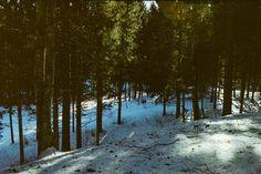 Mountain on Film