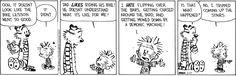 Calvin & Hobbes  6/27/15