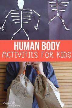 Human Body Activities for Kids – Montessori SELF Ideas Human Body Science, Human Body Activities, Health Activities, Hands On Activities, Human Body Crafts, Physical Activities, Kindergarten Science Activities, Science For Kids, Preschool Activities