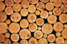 Logs Stock Photos Images, Royalty Free Logs Images And Pictures