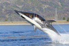 Seabreacher, la prima moto sommergibile per andare in acqua come un delfino