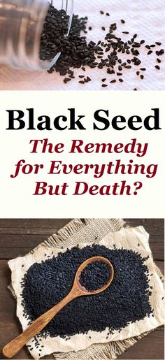 holistic health remedies Black Seed – The Remedy for Everything But Death? - Black seed come from yearly blooming plant, Nigella Sativa, and the name was given due to the physical appearance of the seed. Cold And Cough Remedies, Flu Remedies, Holistic Remedies, Natural Home Remedies, Herbal Remedies, Health Remedies, Natural Healing, Nigella Sativa, Natural Kitchen