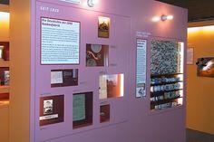 In vielen Schaukästen wird die Geschichte des Bonbons erklärt und über Bildschirme bildlich verdeutlicht.