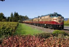 Napa Valley Wine Train --  From The Knot's: 4 Train Honeymoons You Should Choo-Choo-Choose!