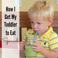 How I Get My Toddler to Eat Spinach -  Blend together the following:  2 large handfuls baby spinach  1 cup milk (cow's, almond, soy, etc.)  1 frozen banana  1 tbsp nut butter (peanut, almond, etc. – optional)