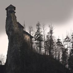 """An abandoned house within the vicinity of the Bell Witch Caves in Adams, Tennessee, USA. The photographer clearly states it is not the actual """"Bell Witch House"""" of folklore. photo © Scout 11 via The Macabre And the Beautifully Grotesque"""