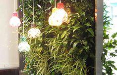 Living Walls with lighting
