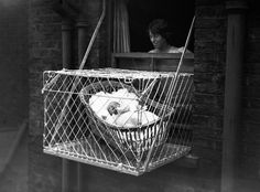 In the 1930s, London nannies lacking space for their young ones resorted to the baby cage. A metal construction that was placed out of the window in order to save some place in the room. Would someone try this on our days ?