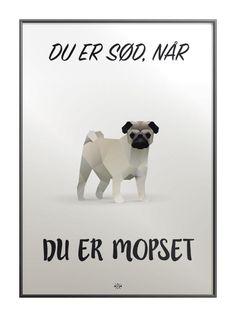 Cola plakaten - sjov plakat med far joke til alle Cola elskerne! Funny Bunnies, Cute Funny Animals, Dog Quotes, Funny Quotes, Cool Picture Frames, Nostalgic Pictures, Lame Jokes, Haha So True, Poster Pictures