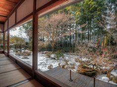Snow garden by Ryusuke Komori on 500px