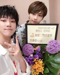 LOOK HOW CUTE THEY ARE #seungcheol #jeonghan #jisoo #junhui #soonyoung #wonwoo #jihoon #minghao #mingyu #seokmin #seungkwan #hansol #chan #scoups #han #joshua #jun #hoshi #sloth #woozi #the8 #minnie #DK #adorableboo #vernon #dino #seventeen #svt #saythename17 #pledis