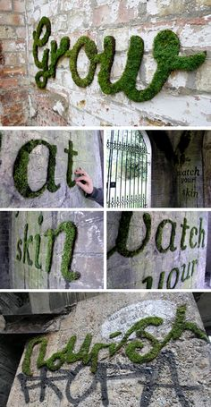 Internal for Stage Display    Moss Graffitti: i so wanna do this