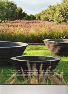 Concrete pots by Les Botta provide a focal point on the lawn